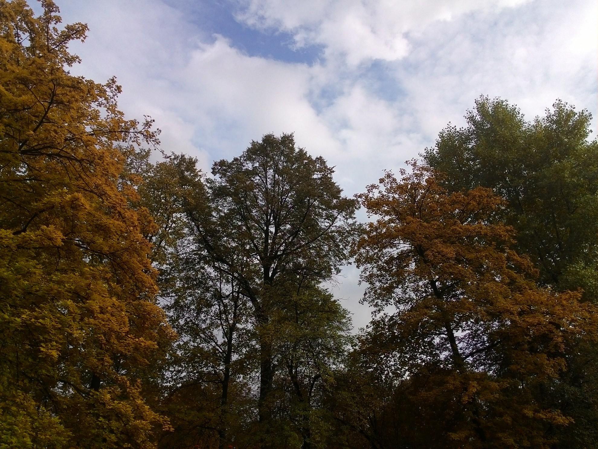 Za co uwielbiam jesień?