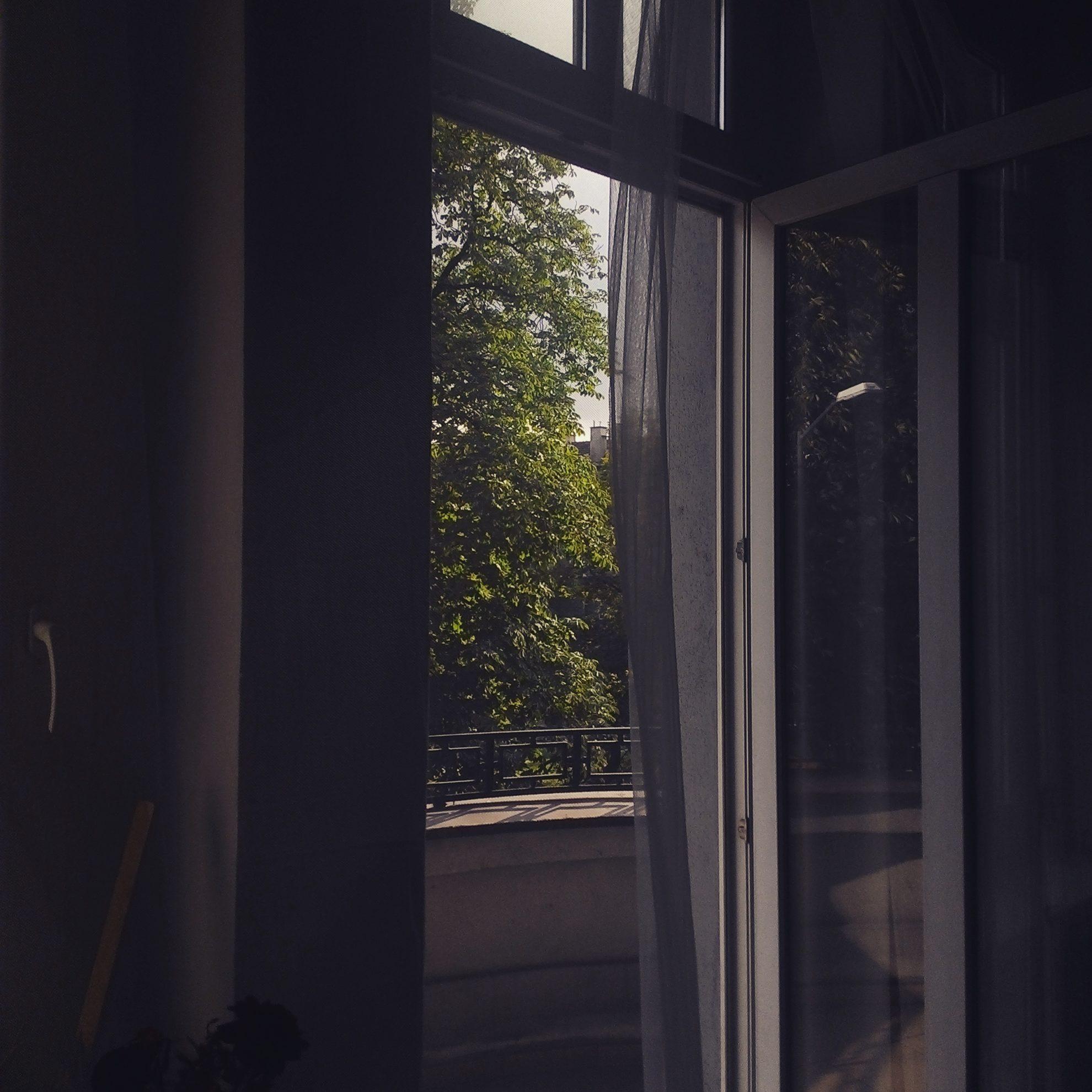 Fotograficzny przegląd poprzednich mieszkań, Witczaka